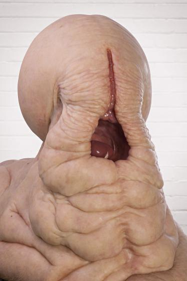 Гиперреалистичные скульптуры Патриции Пиччинини