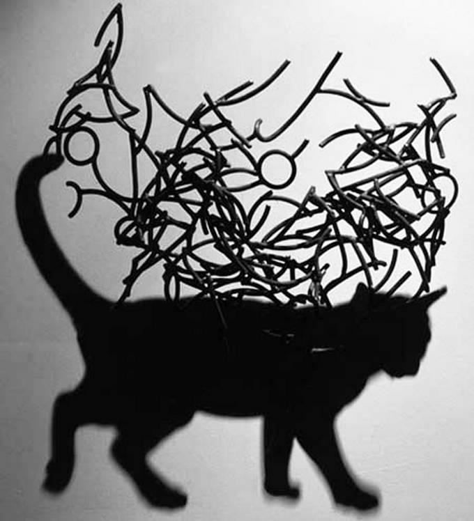 Искусство теней от Larry Kagan - кот
