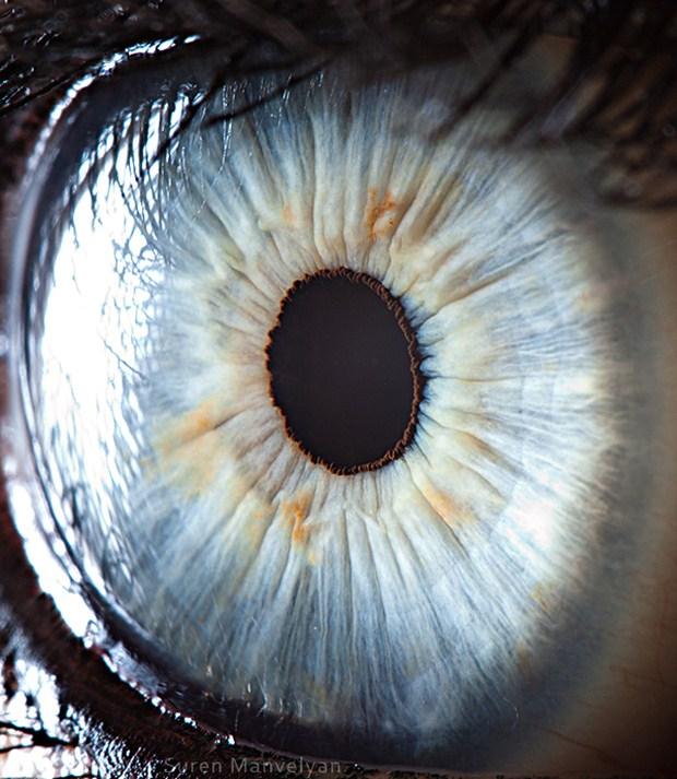Your beautiful eyes - Suren Manvelyan