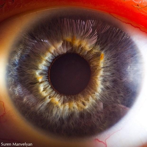 Suren Manvelyan – Your Beautiful Eyes