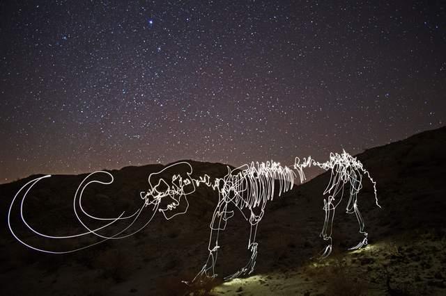 mammoth -  Darren Pearson