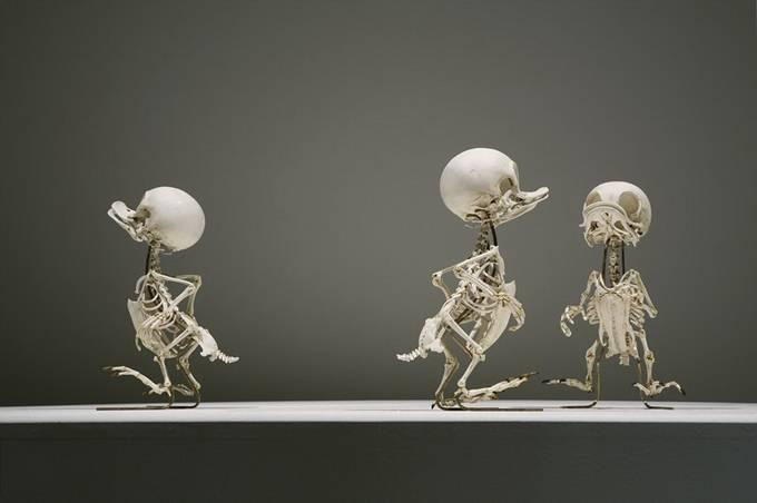 Homo Animatus 1